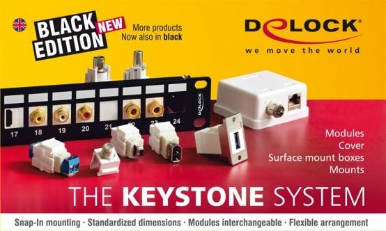 Delock Keystone
