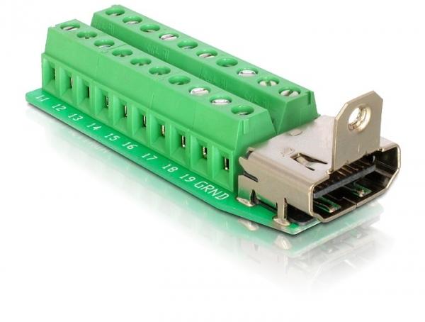 Delock HDMI (anya) – 20 tűs sorkapocs adapter