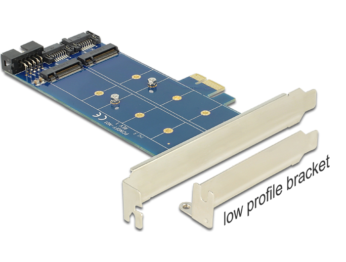Delock PCI Express Card > 2 x internal M.2 NGFF