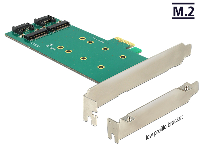 Delock PCI Express Card > 2 x internal M.2 Key B 110 mm - Low Profile Form Factor